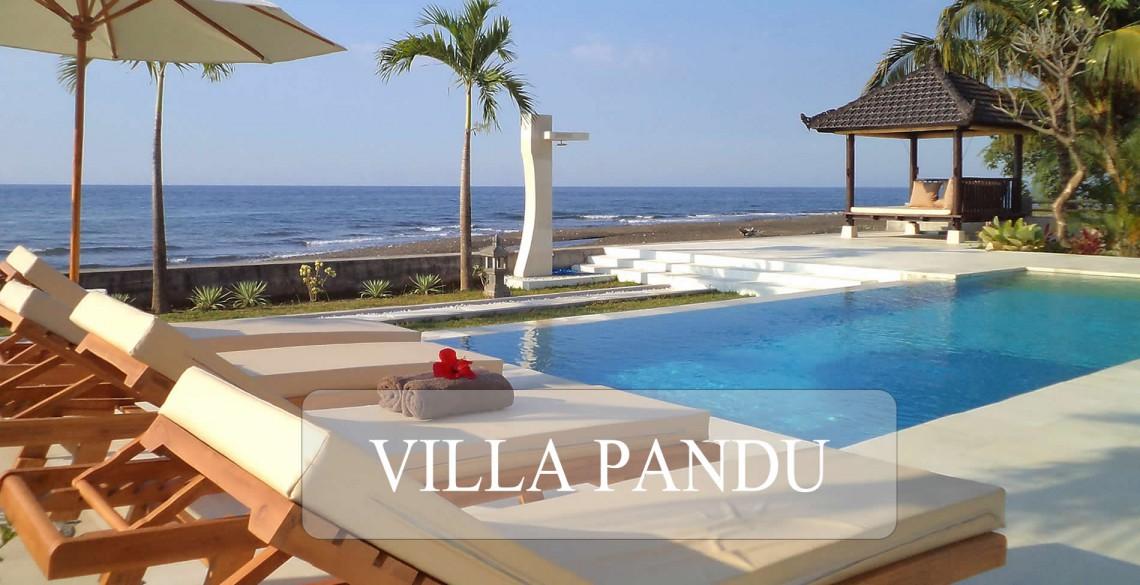 Villa Pandu Pool